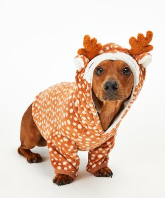 Dog's Fleece Onesie, Brown